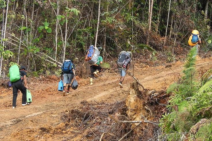 Perjalanan survei okupansi rangkong di Dusun Langau. (RANGKONGID/Jimmi Kurniawan)